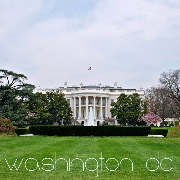 Washington DC and the White House